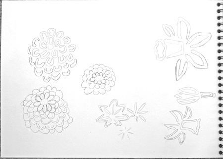 flower sketches